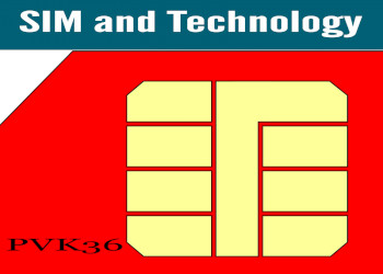 Sim and Technology