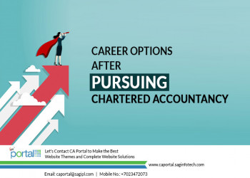 Career Options After Pursuing Chartered Accountancy