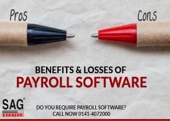 Pros and Cons of HR Payroll Software for Business Management
